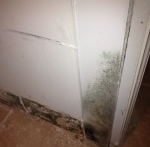 Wall Water Damage