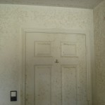 Water Extraction and Mold Remediation Cape 1